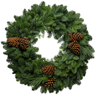 Northwoods Christmas Wreath