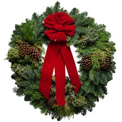 Large fresh Christmas wreaths decorated with pretty berries and red velvet bows