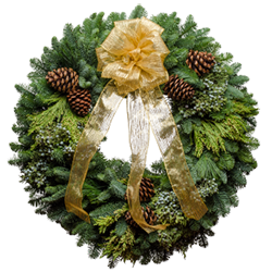 Large Christmas wreaths made from fresh evergreens and topped with a gold bow