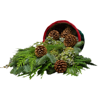 "10""Farmer's Evergreen Basket"