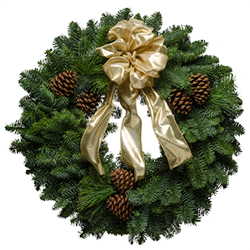 Live Christmas wreaths with silky gold bow