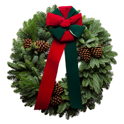 Fresh Christmas wreaths with red and green Christmas bows