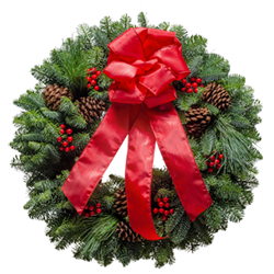 Fresh live Christmas wreath with a red satin bow