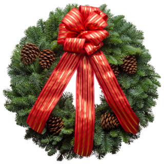 Live Christmas wreath with a red silky ribbon and pine cones