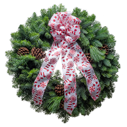 Fresh Christmas wreaths with a pretty candy cane embossed bows