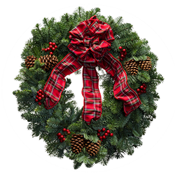 Fresh Christmas wreaths topped with a red plaid bow and red berries