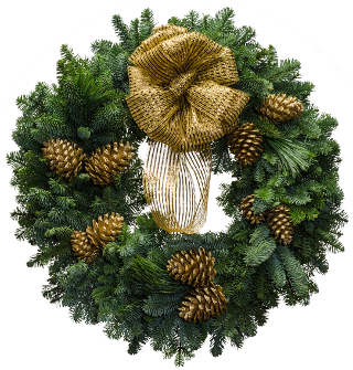 Large Christmas wreath with a metallic gold bow and gold painted cones