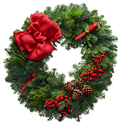 Large Christmas wreath with a red linen bow, cardinals and berries
