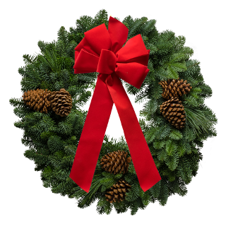 Fresh evergreen Christmas wreath decorated with a red velvet bow